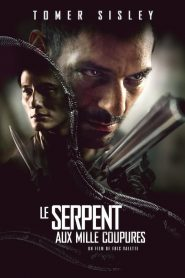 Le Serpent aux mille coupures streaming vf
