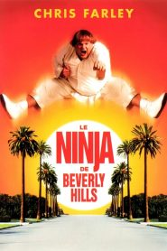 Le Ninja de Beverly Hills streaming vf