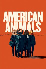 American Animals papystreaming
