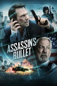 Assassin's Bullet streaming vf