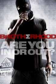 Brotherhood streaming vf