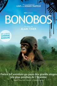 Bonobos papystreaming