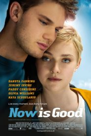 Now Is Good streaming vf