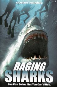 Requins tueurs streaming vf