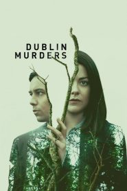 Dublin Murders streaming vf