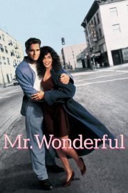 Mr. Wonderful streaming vf