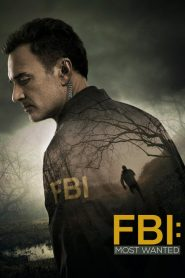 FBI: Most Wanted streaming vf